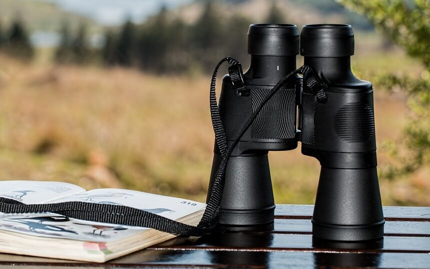 5 Best Binoculars for Alaska Cruise - Enjoy an Unforgettable Experience to the Fullest!