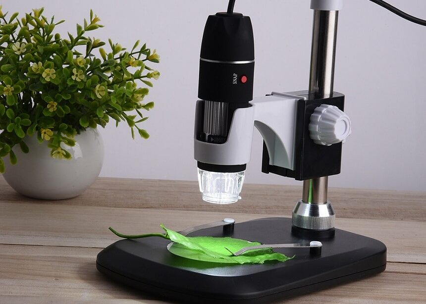 5 Best Microscopes for Coins - Essential Tool for Any Collector