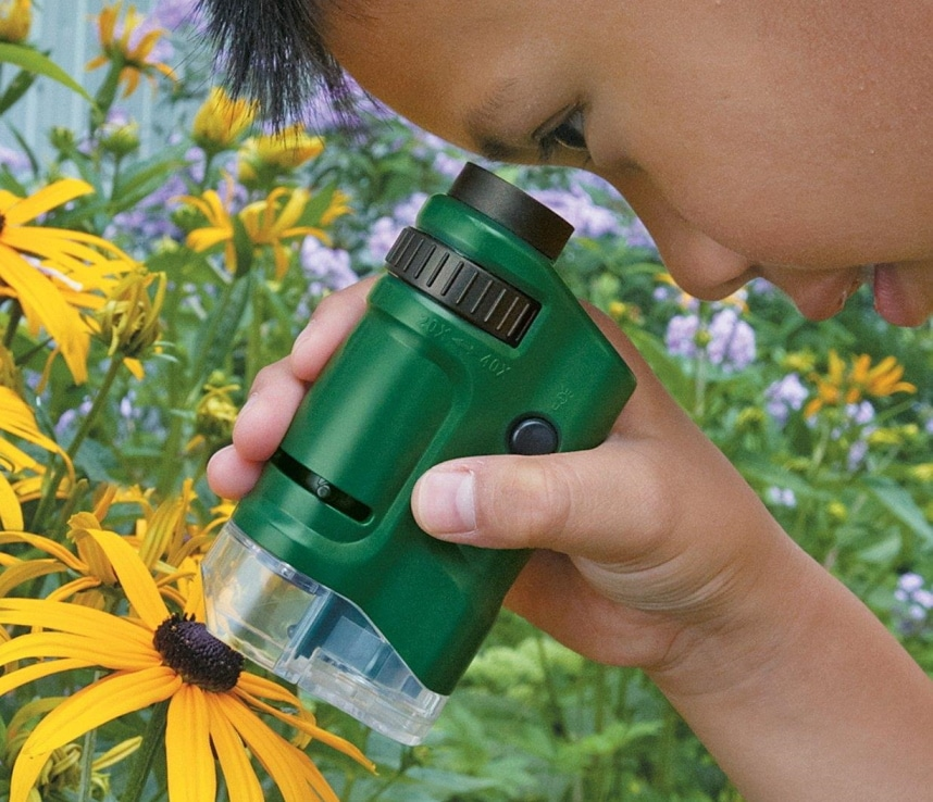 5 Best Pocket Microscopes - Scientifical Research on the Go