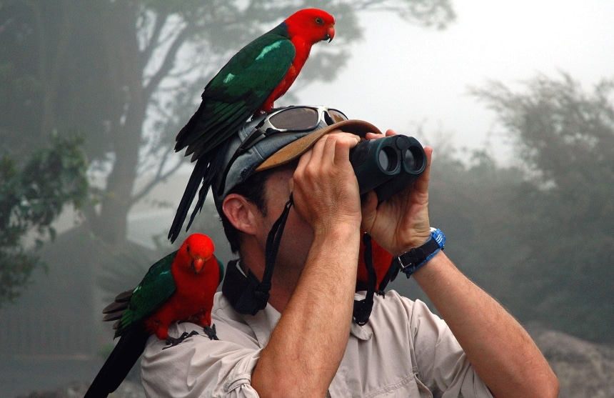 Top 6 Binoculars for Wildlife Viewing – Get Closer to Nature!