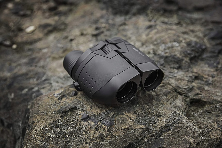6 Best Zoom Binoculars for Wildlife Watching, Sports, and More