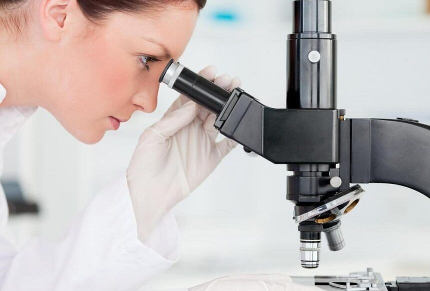 10 Best Compound Microscopes – High-End Devices with Excellent Magnification!