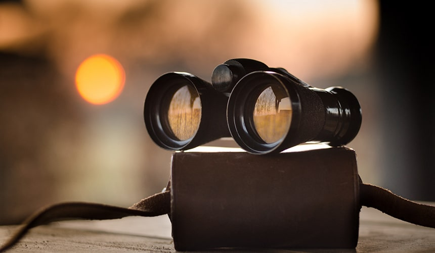 7 Best Low Light Binoculars That Excel Under Both Dark and Light Conditions