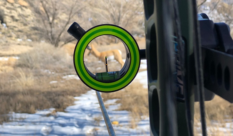 8 Best Single Pin Bow Sights - Excellent Addition to Any Bow