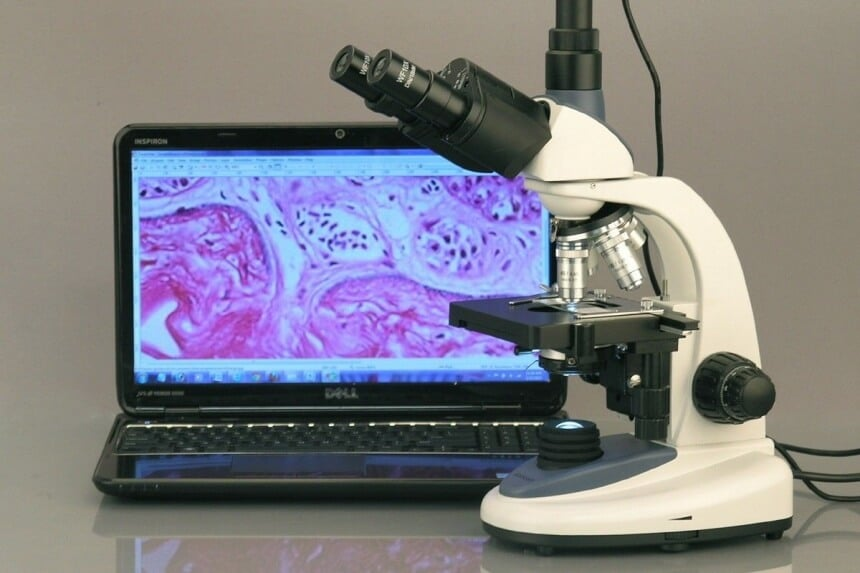 Simple vs Compound Microscope: What Can You Use Them For?
