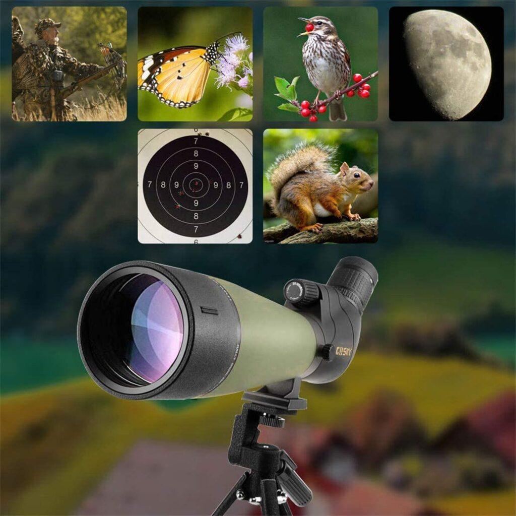 Spotting Scope vs Telescope: Which is More Convenient?